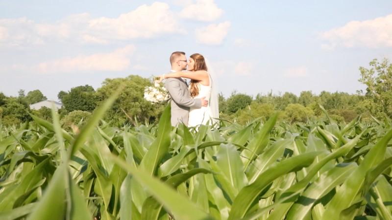 Livonia, NY corn field