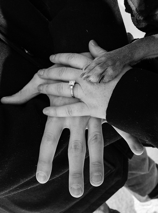 hand over hand displaying rings